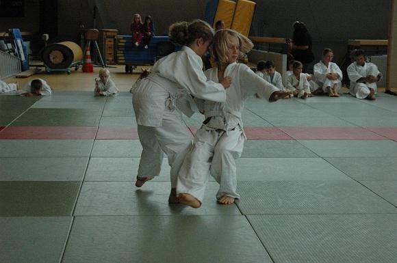 2011-07 Judo_10